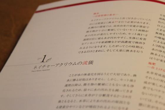 2011082002.jpg