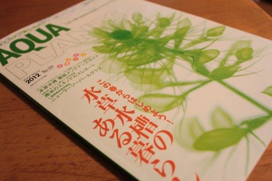 2012050401.jpg